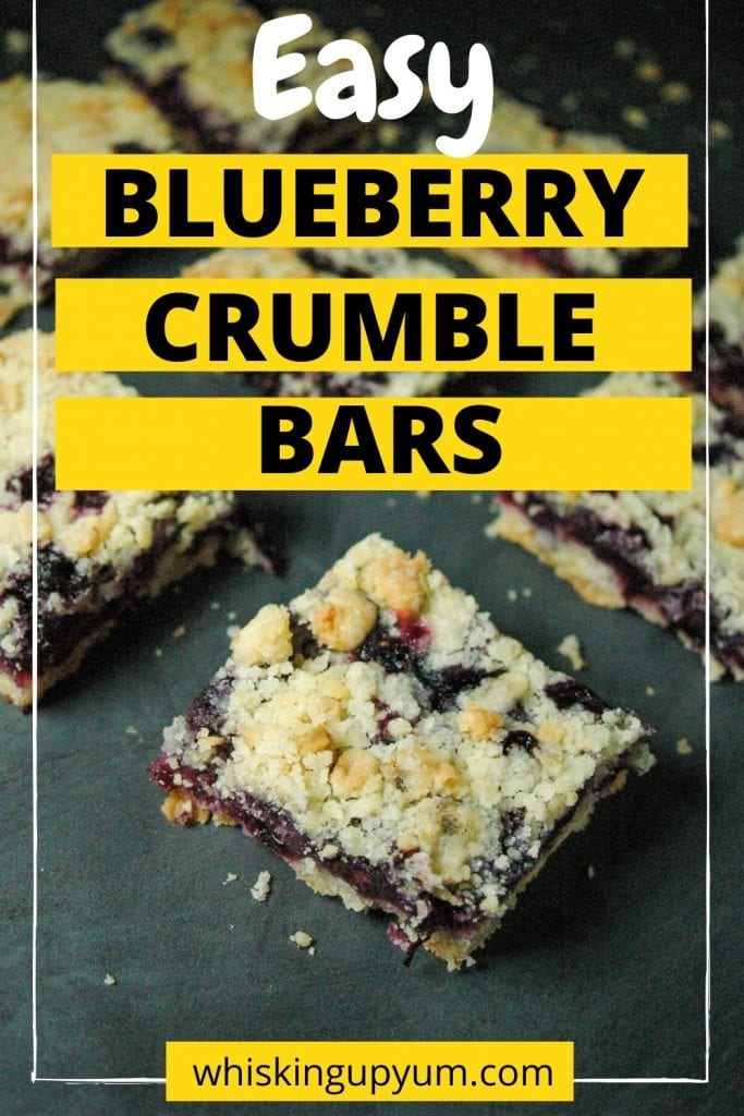 Quick and easy blueberry crumble bars