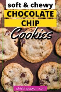 Easy Chewy Chocolate Chip Cookies